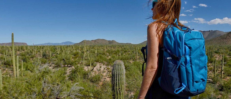 hiker in phoenix arizona